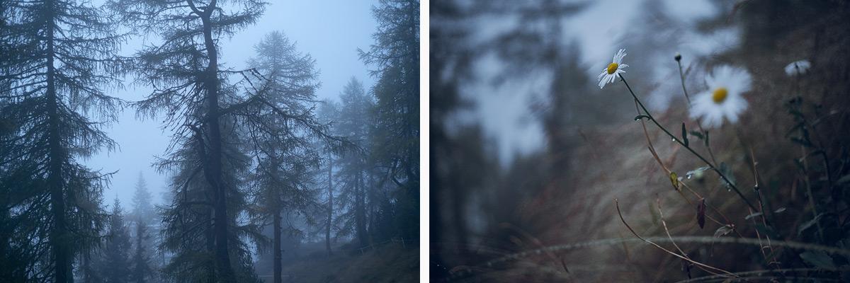 Alpine-Poesie-01